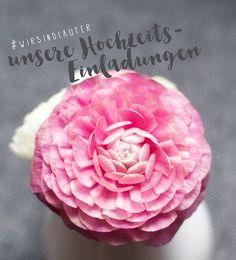 Blog - Céline Claire Designs #blog #blogpost #wedding #weddinginvitation #weddinginspiration Grafik Design, Blog, Rose, Flowers, Plants, Image Editing, Pink, Blogging, Plant