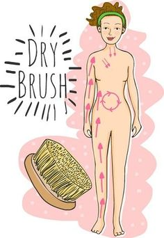 Dry skin brushing is great for the circulatory and lymphatic systems