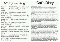this is just tooo funny.. The cat diary made me laugh out loud....sounds like Buffy, my mothers cat..I swear she was trying to trip me day at the bar-b-que when she wrapped herself around my feet and attacked my toes cause they were painted..
