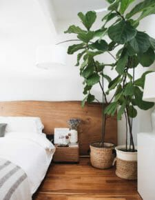 Home & Design Archives - Hither & Thither