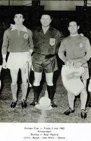 Resultado de imagem para SL Benfica campeão