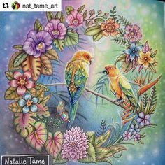 Amazing! #Repost @nat_tame_art with @repostapp #selvamagica #desenhoscolorir   #johannabasford #MagicalJungle  #florestaencantada #jardimsecreto