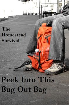 Bug Out Bag http://www.publicdomainpictures.net/view-image.php?image=21024=travel