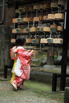 Make a wish! Nara, Japan 2013/11/4 Photo: meiatwork