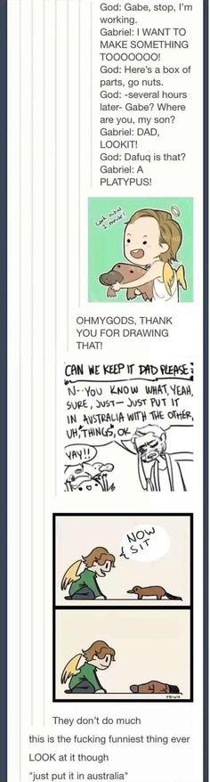 Just put it in Australia