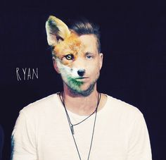 Half Ryan, Half fox #RyanTedder #OneRepublic #Native