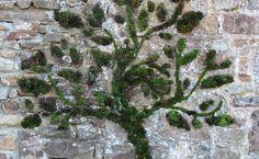 Mousse graffiti - Arbre Entièrement réalisé en mousse et colle végétales, il est écologique et biodégradable.