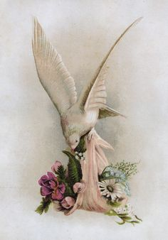 victorian dove and flower