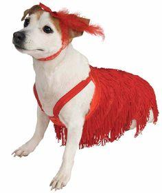 """Flapper"". Pet Boutique ""Flapper"" Pet Costume Accessory. M/L – Bull Terrier, Beagle, Schnauzer, Bulldog, Boxer, Pug, Weimaraner. L/XL – Basset Hound, Brittany Spaniel, Collie, Cocker Spaniel, Doberman Pinscher, Golden Retriever, Labrador Retriever, Pit Bull, Siberian Husky, Standard Poodle.   eBay!"