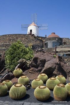 Lanzarote, Canary Islands - go there to one of the Riu Hotels & Resorts.