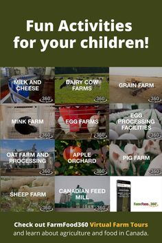 Are your kids bored? Take a virtual tour of 11 different farms in Canada.