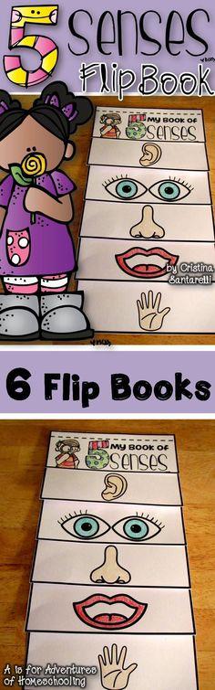 Five Senses Activities!                                                                                                                                                                                 Más