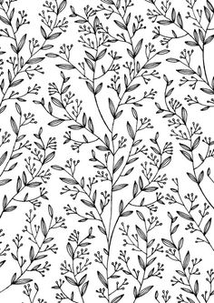 Liked the black and white pattern for a print. 12/07/2016