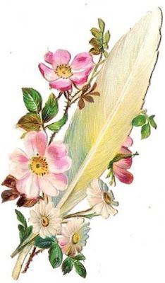 Rosas de Verônica: Penas com Flores