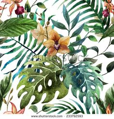orchid, tropical, wallpaper