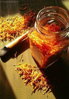 Natural Vitamins, Natural Health, Tasty, Yummy Food, Kitchen Helper, Kitchen Witch, Healing Herbs, Green Kitchen, Preserves