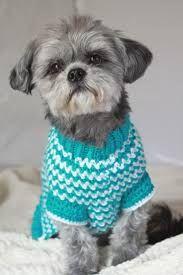 Image result for crochet dog sweater