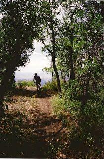 Mountain Bike the Rainbow Rim Trail Arizona