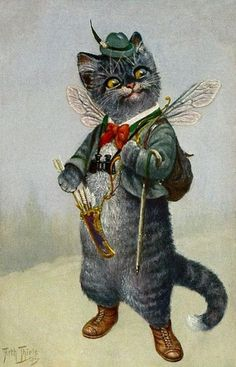 Cat Chat Katze Cupid Binoculars from Arthur Thiele Vintage Postcard
