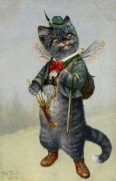 Cat Chat Katze Cupid Binoculars from Arthur Thiele Vintage Postcard