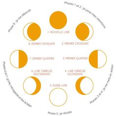 Living with the cycle of the Moon: Productivity & Creativity - Créa& -