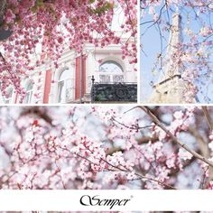 #flowers #spring #pink #getthelook