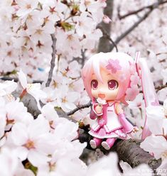 Nendoroids and Cherry Blossoms