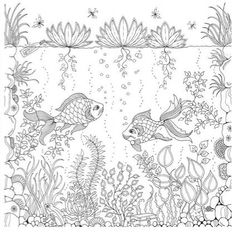 Johanna Basford: Secret Garden An Inky Treasure Hunt and Coloring Book: