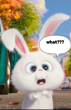 Funny Cartoon Gifs, Cute Cartoon Characters, Cute Cartoon Pictures, Cool Anime Pictures, Cute Love Pictures, Rabbit Wallpaper, Cute Panda Wallpaper, Cartoon Wallpaper Iphone, Cute Disney Wallpaper