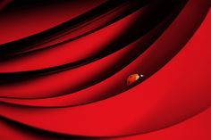 Photo AFL my source of inspiration by Esther van der Lecq on Red Color Meaning, World Photography, Photography Composition, Photography Photos, Today Pictures, Safe Haven, Source Of Inspiration, Best Photographers, Shades Of Red