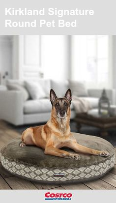 Kirkland Signature Round Dog Bed Brown Diamond Extreme Comfort Durable for sale online Cheap Dog Beds, Dog Beds For Small Dogs, Large Dogs, Luxury Pet Beds, Round Dog Bed, Orthopedic Dog Bed, How To Make Bed, Fabric Covered, Pet Supplies
