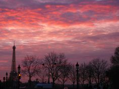 Paris in autumn .  You can also see on this picture the Eiffel Tower .