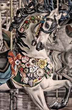 Ride a Painted Pony (by Jak of Arts Photography)