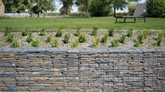 otago schist gabion wall