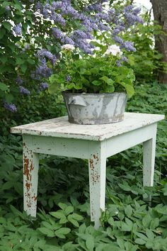 Fill the big tin bath with geraniums? Amazing Gardens, Beautiful Gardens, Tin Bath, Outdoor Tables, Outdoor Decor, Old Farm Houses, Garden Table, Small Gardens, Geraniums