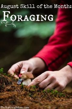 August Skill of the Month: Foraging Skills - Survival Mom