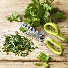 Kitchen Herb Scissors