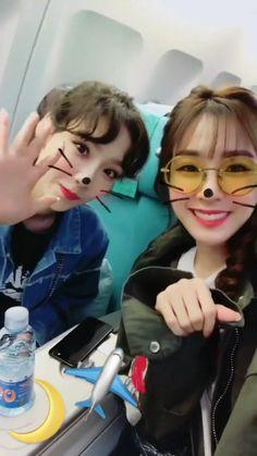TaeNy is back! Kpop Girl Groups, Kpop Girls, Korea, Snsd Tiffany, Monsta X Wonho, Rhythm And Blues, Music People, Young Ones, Popular Music