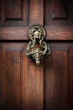 Image detail for -Front door with a handle in the form of the head of Castle Dracula in . Door Knockers, Door Knobs, Porches, Front Door Handles, Front Doors, Brooklyn Brownstone, Big Sky, Garden Styles, Architecture Details