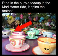 Again, MORE REASONS WHY I NEED TO GO TO DISNEYLAND!!! Lol I love getting dizzy, despise roller coasters.