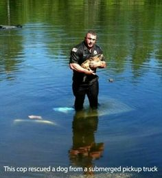 Faith in humanity restored Sweet Stories, Cute Stories, Animals And Pets, Funny Animals, Cute Animals, Happy Animals, Chigago Fire, Human Kindness, Police Officer