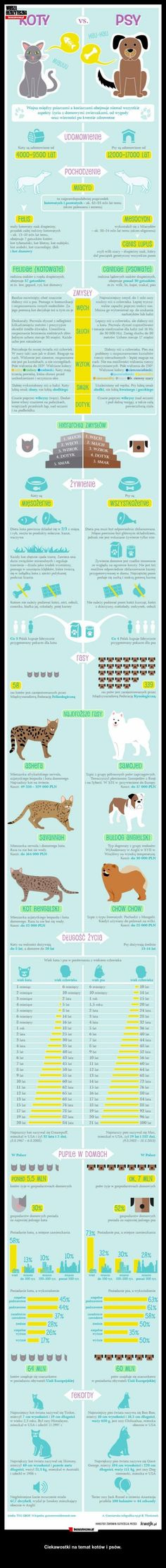 The eternal dispute about dogs and cats .. and you for who you are? ; D #cats