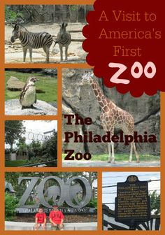A Visit to America'a First Zoo - The Philadelphia Zoo #VisitPhilly
