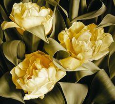 "Mia Tarney: ""Anemones"", Oil on Canvas - Поиск в Google"