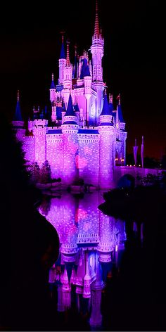 WDW April 2009 - A Castle full of Love by PeterPanFan, via Flickr