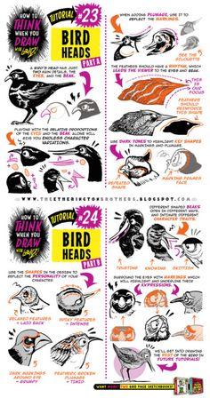 """drawingden:  """"How to draw BIRDS HEADS tutorial by STUDIOBLINKTWICE  """""""
