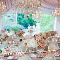 Pink wedding reception. Wedluxe Tara & Mostafa