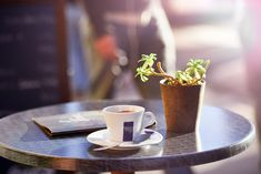 Morning-Coffee-On-Outside-Cafe-Table-With-Plant-&-Menu