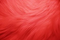 Red Fur Texture - OGQ Backgrounds HD