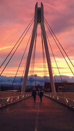66 Best University of Utah images in 2016   University of